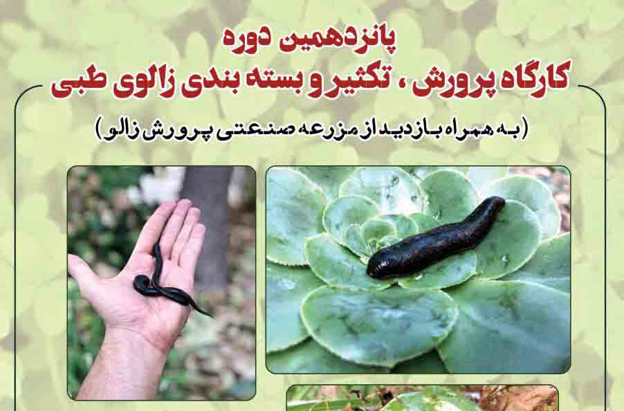 ثبت نام کارگاه آموزشی پرورش زالو در دانشگاه اصفهان آغاز شد